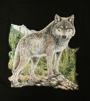 Tiere T-Shirts